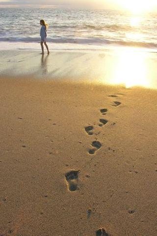 Alexis footprints