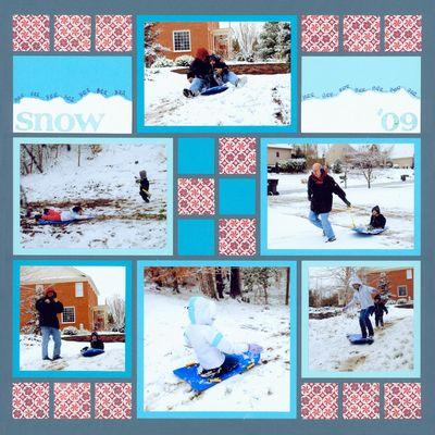 Snow2009_web