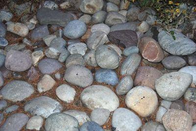 Cabin rocks- Tami potter
