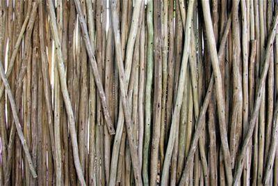 Sticks- tami potter