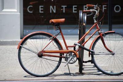 BicycleNYC-Tami Potter