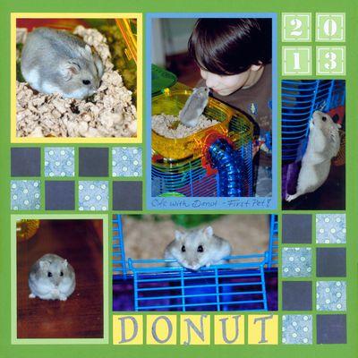 Donet_web