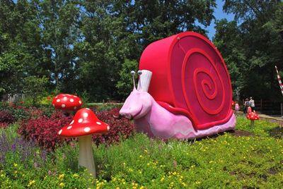 Snail - Tami Potter