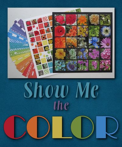 Show Me the COLOR_001